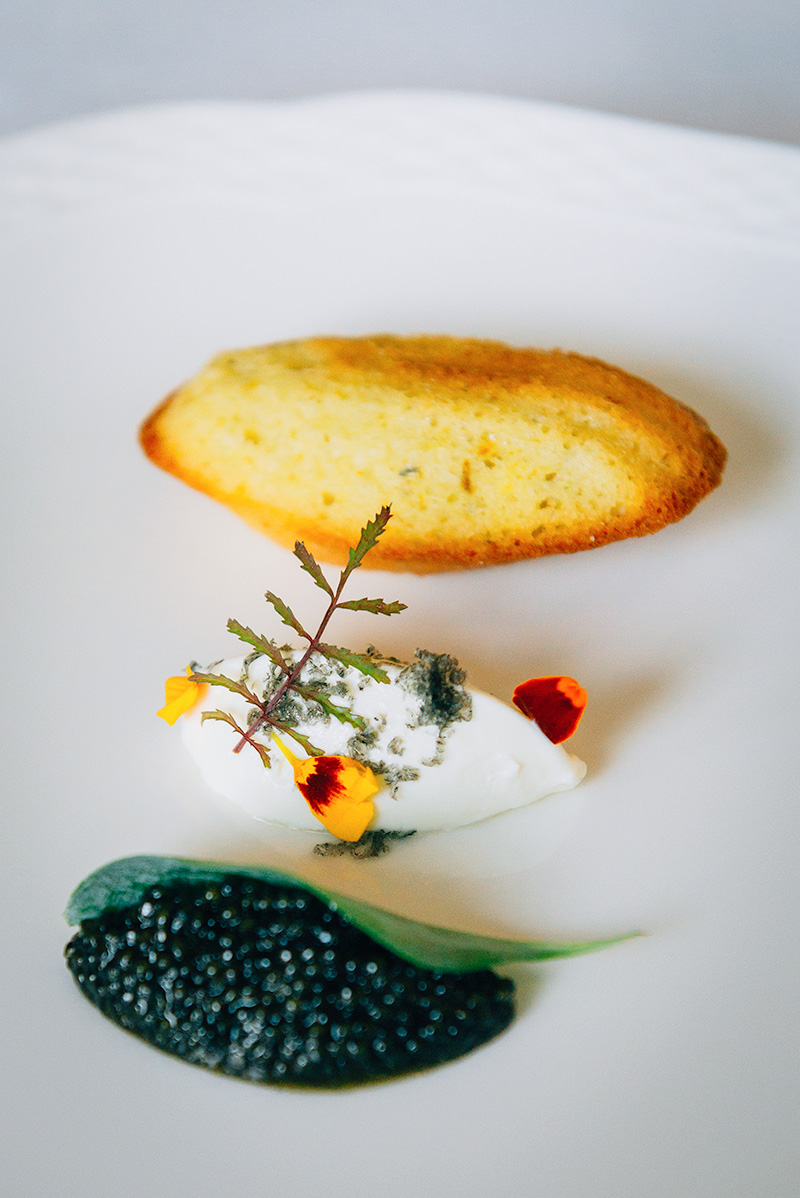 East Coast Caviar: Marigold Madeleine, Oyster Leaf, Creme Fraiche. Paired with 2013 Burrowing Owl Chardonnay, BC, VQA, Okanagan Valley.