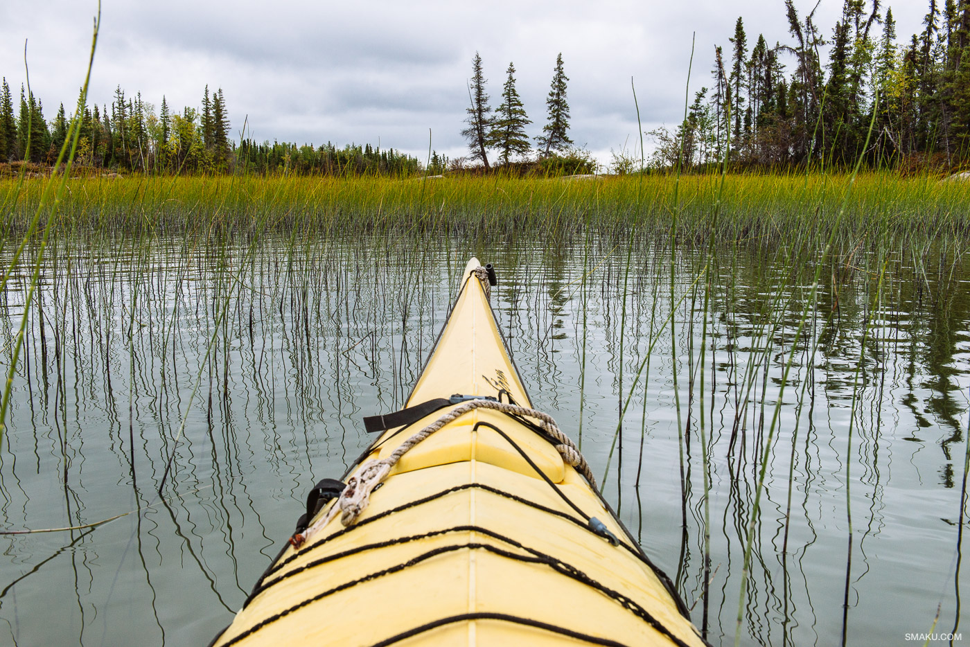 Kayaking on Blachford Lake.